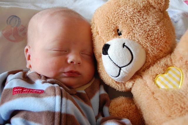 medvěd a kojenec.jpg
