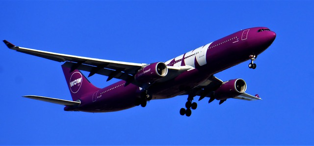 fialové letadlo wow